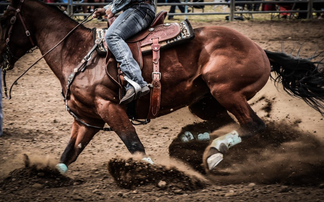 4K Spotlight: Zach's Rodeo Fundraiser.